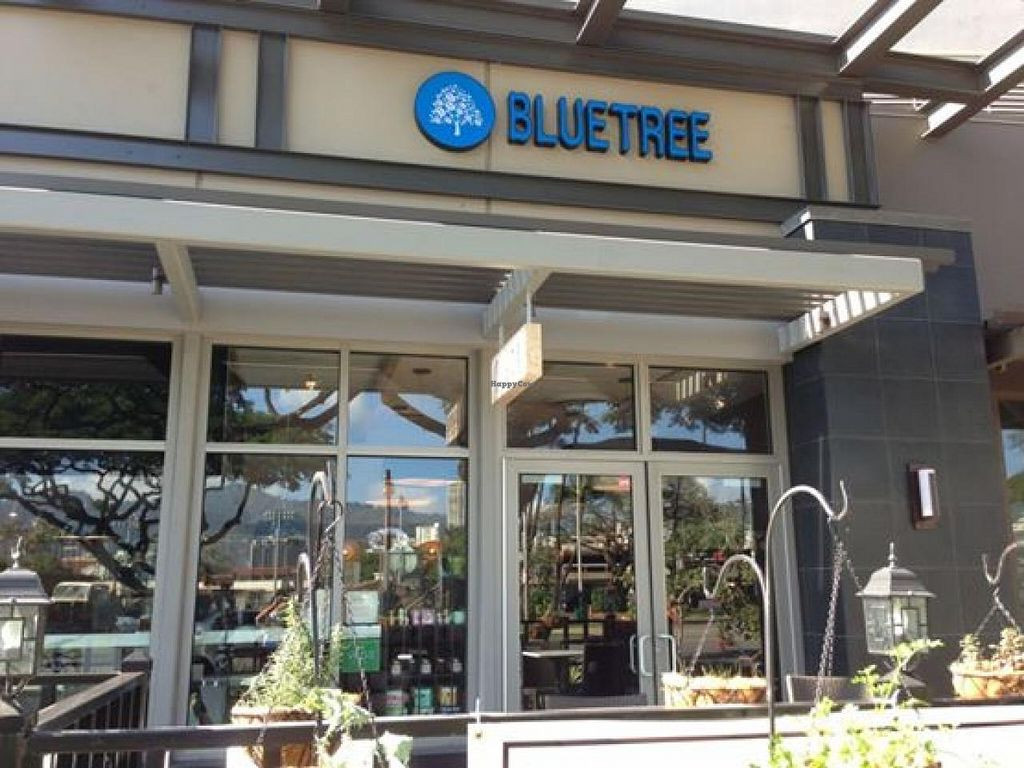"Photo of Blue Tree Cafe  by <a href=""/members/profile/community"">community</a> <br/>Blue Tree Cafe <br/> May 6, 2014  - <a href='/contact/abuse/image/47189/69482'>Report</a>"