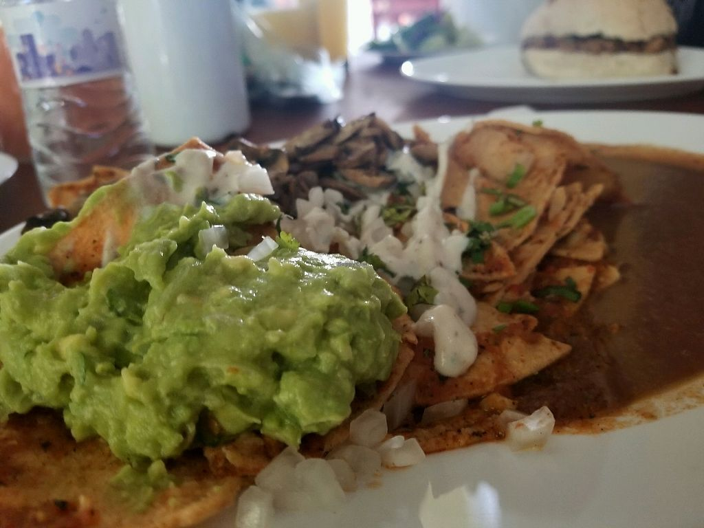 """Photo of Avocado Vegetariano - Santa Gertrudis Copo  by <a href=""""/members/profile/marierii"""">marierii</a> <br/>chilaquiles with extra giluacamole from my friends dish lol <br/> November 27, 2017  - <a href='/contact/abuse/image/47239/329579'>Report</a>"""