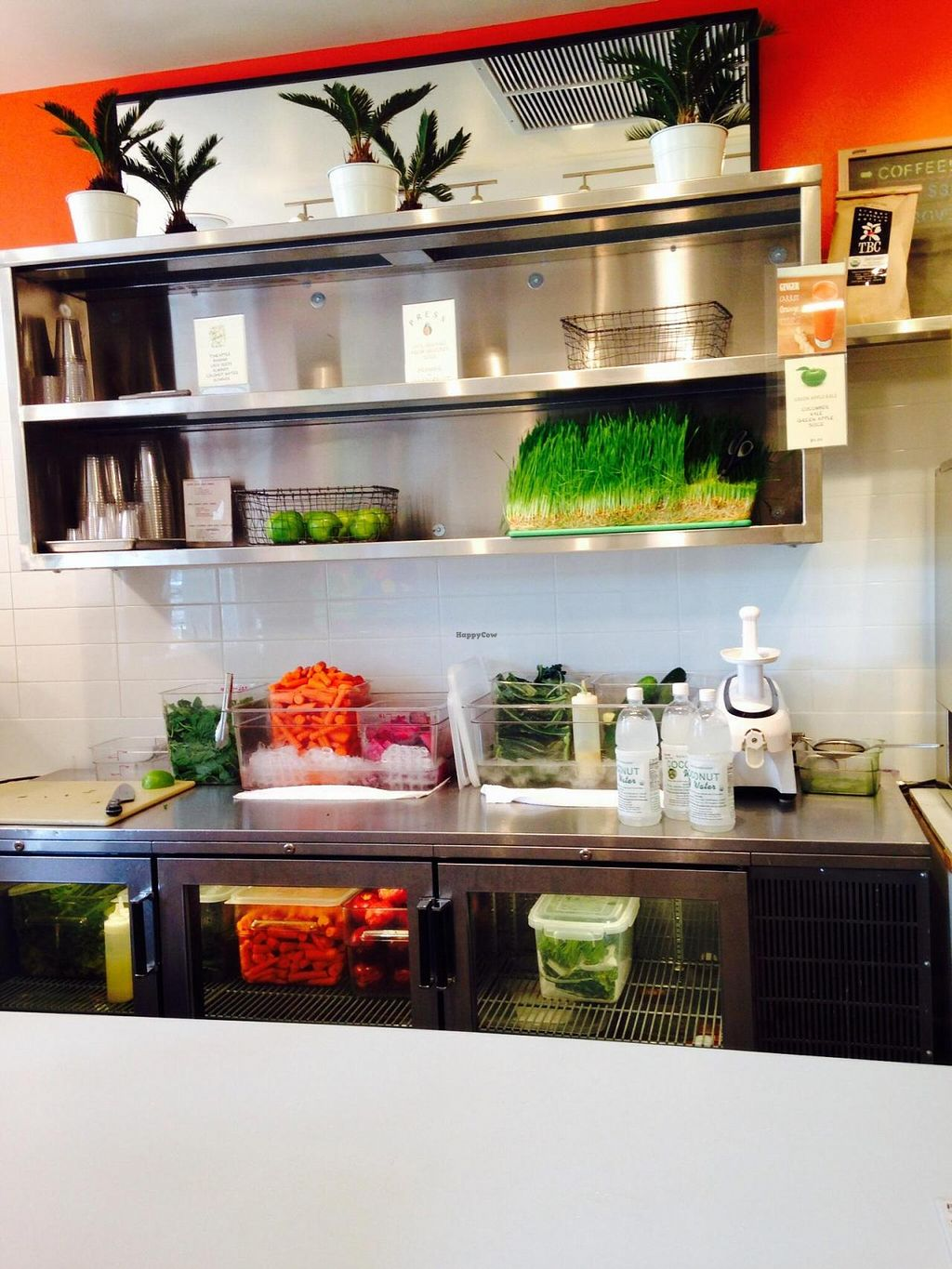 """Photo of CLOSED: PRESS  by <a href=""""/members/profile/cookiem"""">cookiem</a> <br/>Live wheat grass! <br/> July 24, 2014  - <a href='/contact/abuse/image/47333/74982'>Report</a>"""