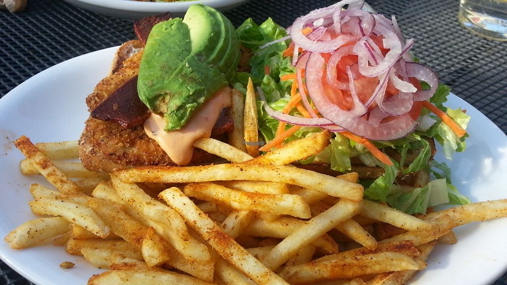 """Photo of Native Foods - Hyde Park  by <a href=""""/members/profile/eric"""">eric</a> <br/>burger with native fries <br/> September 26, 2016  - <a href='/contact/abuse/image/47434/177984'>Report</a>"""