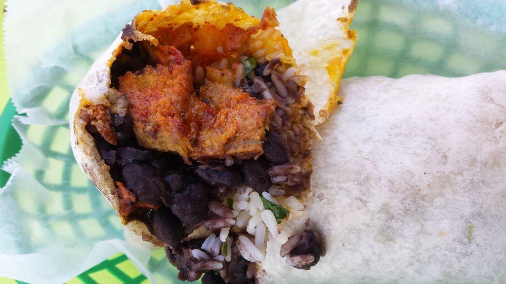 "Photo of The Wild Burrito  by <a href=""/members/profile/American%20Vegan"">American Vegan</a> <br/>Vegan Al Pastor Burrito <br/> June 23, 2016  - <a href='/contact/abuse/image/47450/155645'>Report</a>"