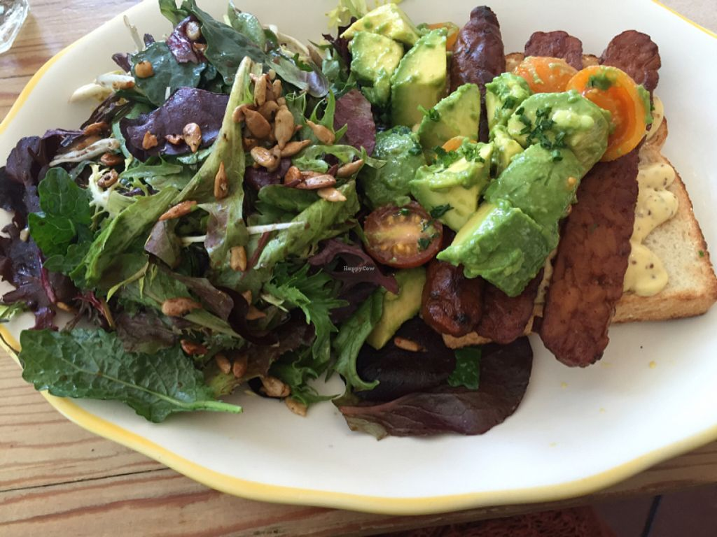 """Photo of Kitchen Mouse  by <a href=""""/members/profile/VeganCookieLover"""">VeganCookieLover</a> <br/>Avocado TLT (maple tempeh, lettuce, tomato) on millet bread with side salad  <br/> June 3, 2016  - <a href='/contact/abuse/image/47458/152063'>Report</a>"""