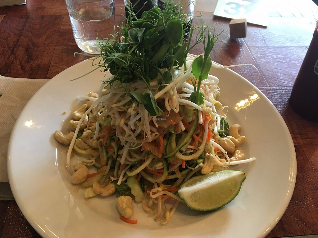 "Photo of Under the Bodhi Tree  by <a href=""/members/profile/sophiefrenchfry"">sophiefrenchfry</a> <br/>Raw Thai - Yummy!! <br/> September 26, 2017  - <a href='/contact/abuse/image/47508/308869'>Report</a>"