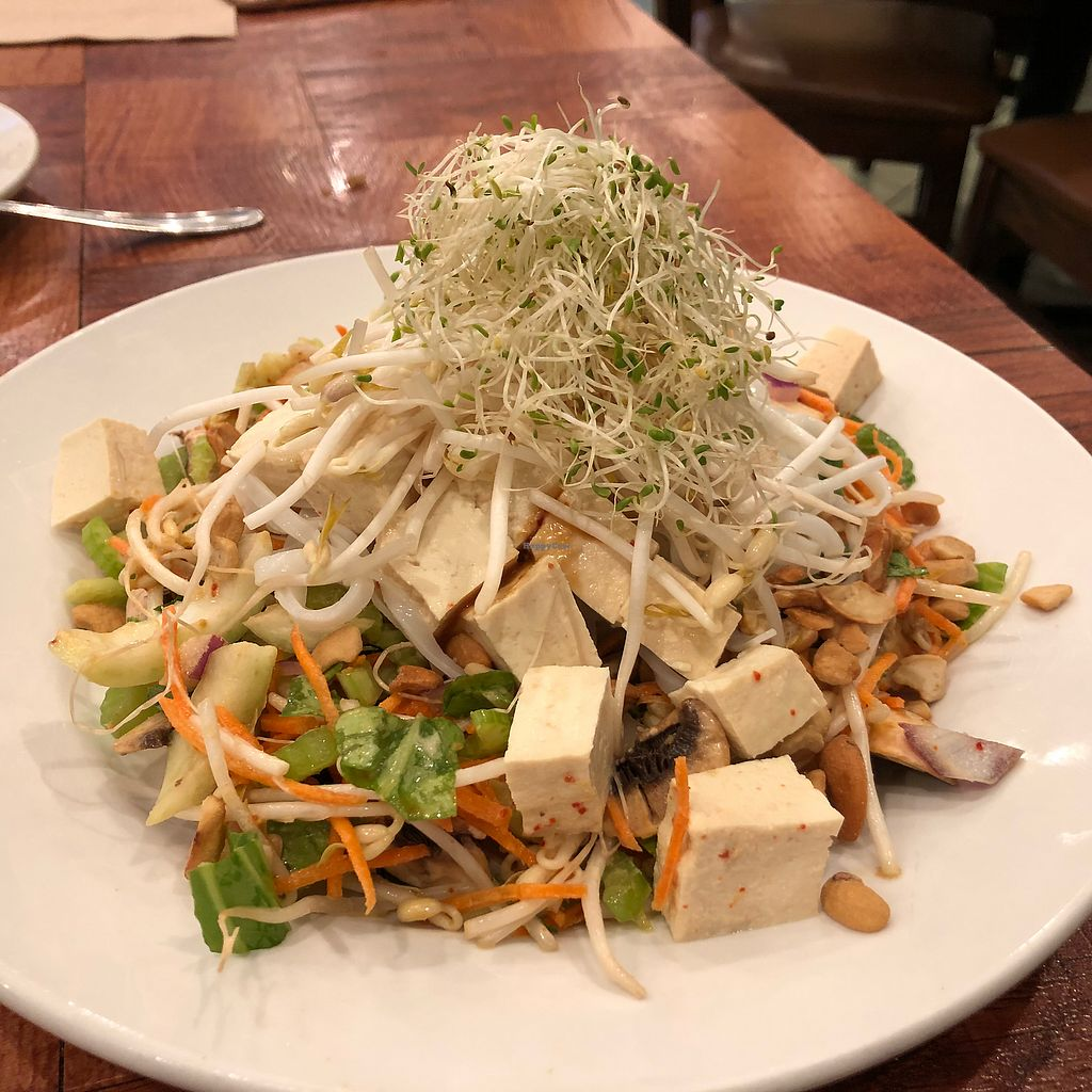 "Photo of Under the Bodhi Tree  by <a href=""/members/profile/ashwinn"">ashwinn</a> <br/>Noodles and tofu  <br/> March 23, 2018  - <a href='/contact/abuse/image/47508/374749'>Report</a>"