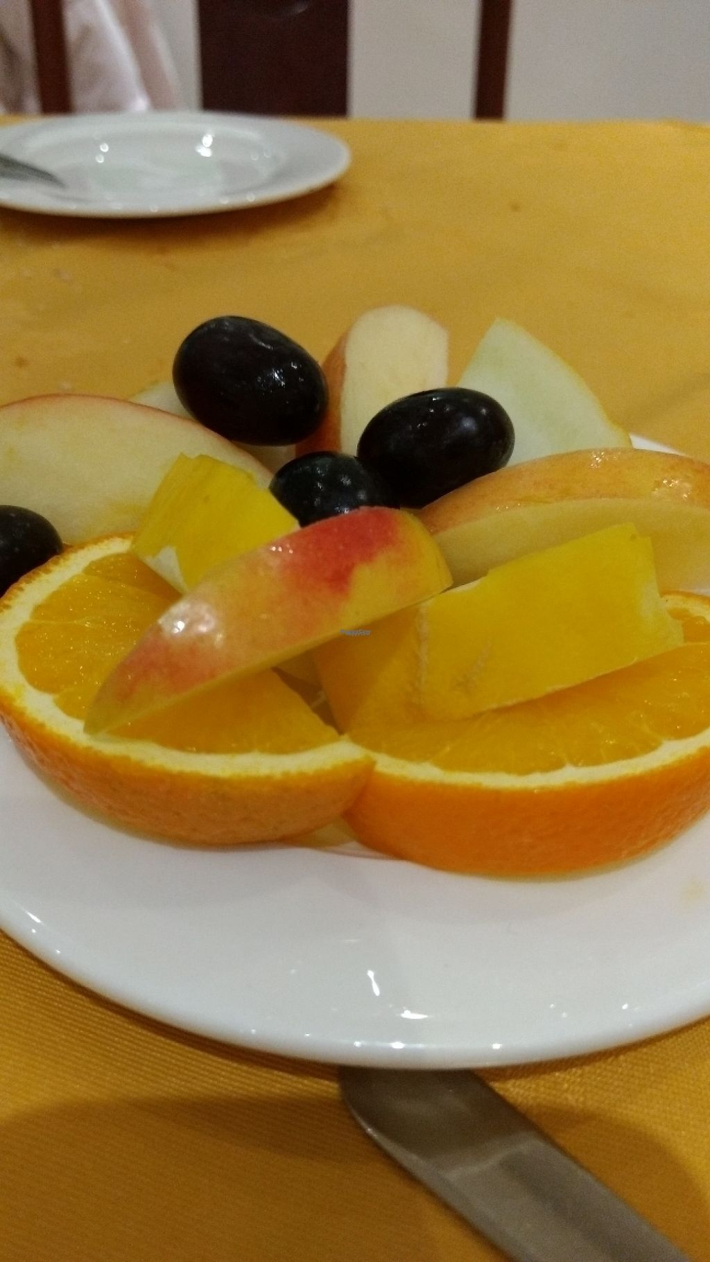 """Photo of Lotus Vegetarian Kitchen  by <a href=""""/members/profile/craigmc"""">craigmc</a> <br/>free fresh fruit with pudding <br/> April 15, 2017  - <a href='/contact/abuse/image/47789/248264'>Report</a>"""