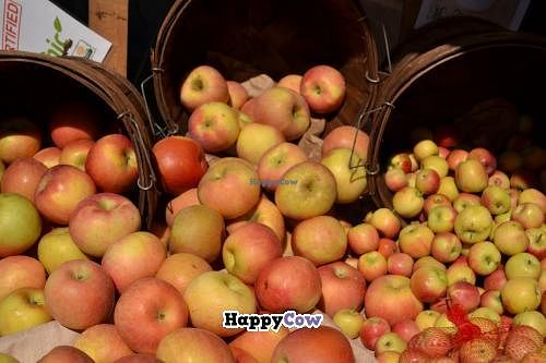 "Photo of Farmer's Market  by <a href=""/members/profile/m.rose"">m.rose</a> <br/>delicious apples <br/> September 30, 2013  - <a href='/contact/abuse/image/4779/56049'>Report</a>"