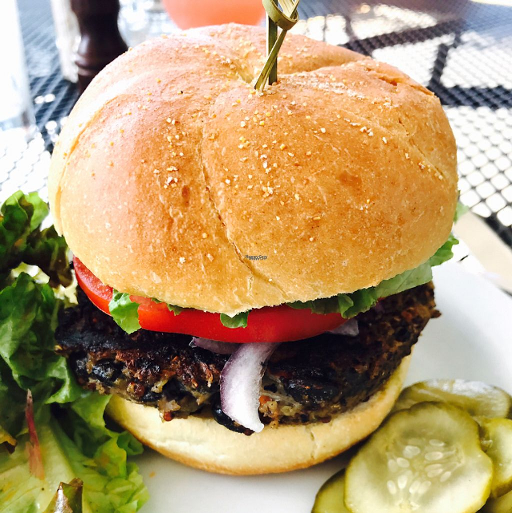 """Photo of The Local  by <a href=""""/members/profile/SRQYogaGirl"""">SRQYogaGirl</a> <br/>Vegan black bean quinoa burger  <br/> November 29, 2016  - <a href='/contact/abuse/image/47801/195776'>Report</a>"""