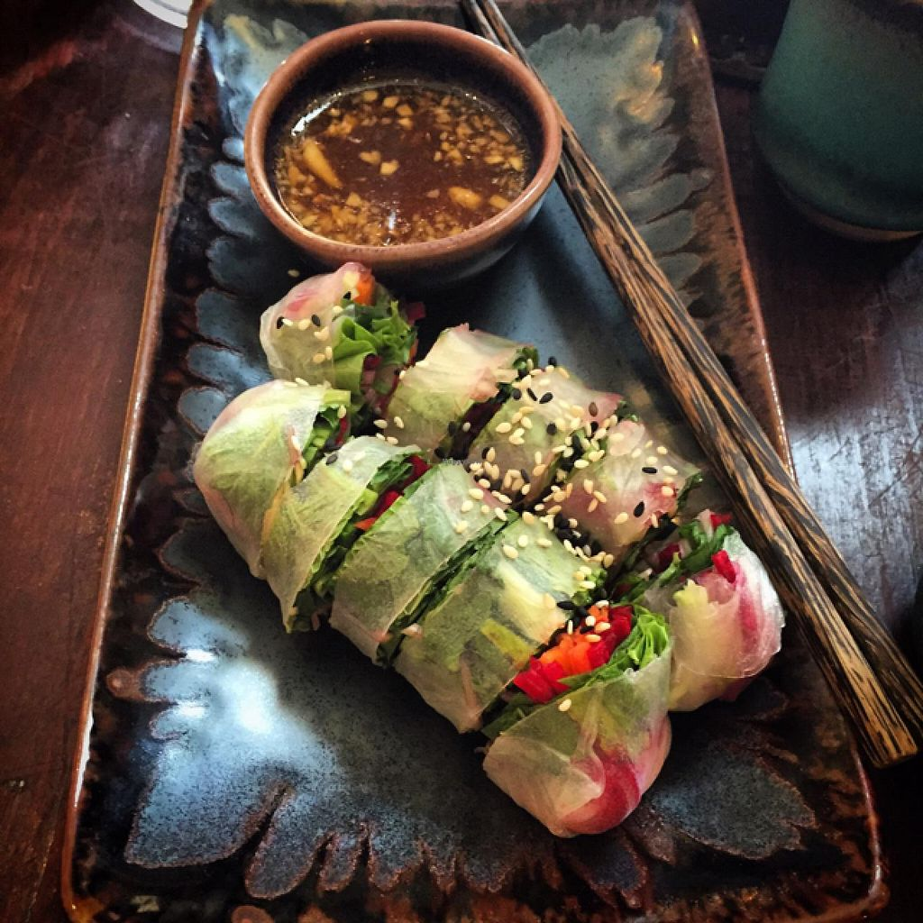"""Photo of June's Art Cafe  by <a href=""""/members/profile/endofcity"""">endofcity</a> <br/>Raw spring rolls <br/> May 16, 2015  - <a href='/contact/abuse/image/47805/102473'>Report</a>"""