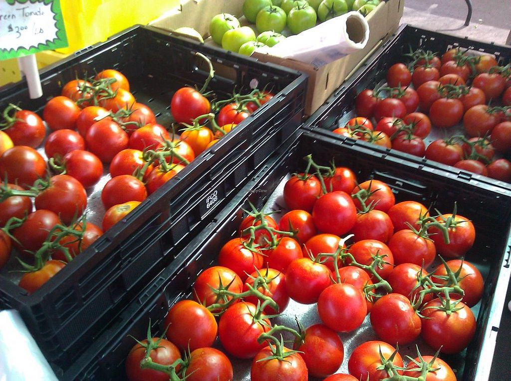 """Photo of Farmers Market  by <a href=""""/members/profile/community"""">community</a> <br/>Farmers Market <br/> June 4, 2014  - <a href='/contact/abuse/image/47850/71370'>Report</a>"""