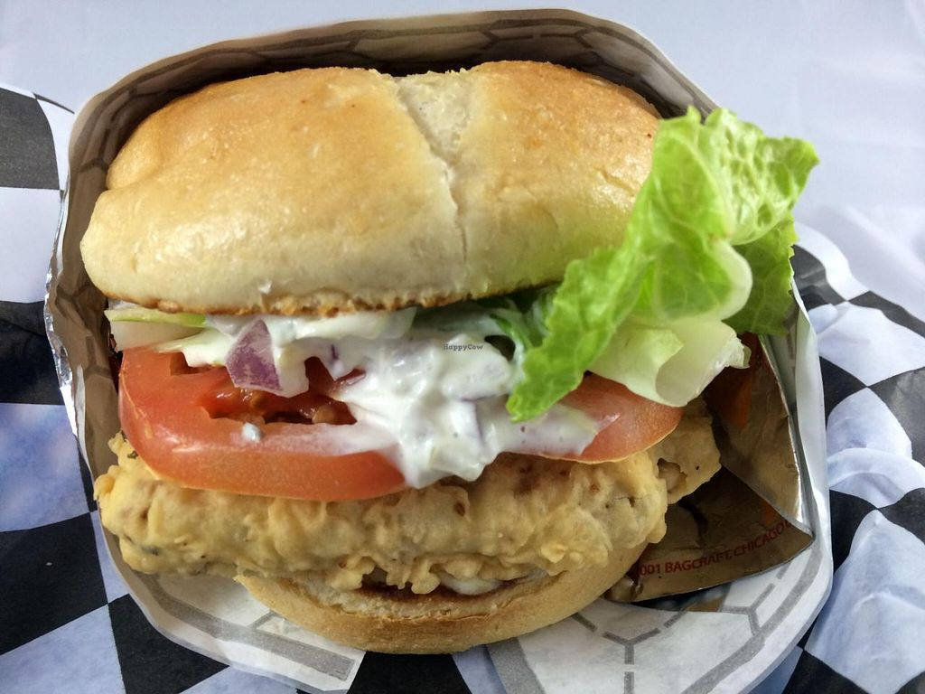 Photo of Earth Burger  by GreenVegetarian <br/>Fish-less Sandwich <br/> September 8, 2014  - <a href='/contact/abuse/image/47902/79417'>Report</a>