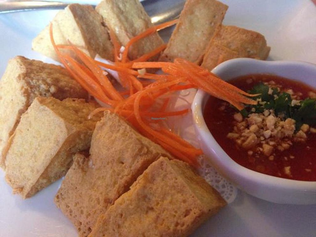 """Photo of Thai Taste  by <a href=""""/members/profile/calamaestra"""">calamaestra</a> <br/>fried tofu <br/> June 9, 2014  - <a href='/contact/abuse/image/47962/71701'>Report</a>"""