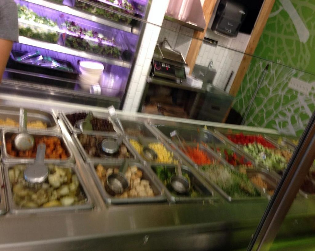 """Photo of sweetgreen  by <a href=""""/members/profile/cookiem"""">cookiem</a> <br/>Choices <br/> June 12, 2014  - <a href='/contact/abuse/image/47990/201727'>Report</a>"""