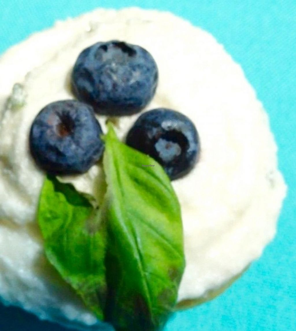 """Photo of CLOSED: Chickpea  by <a href=""""/members/profile/Jeopardy"""">Jeopardy</a> <br/>Chickpea cupcake: Blueberry Lemonade w/ Lemon Basil Frosting <br/> July 10, 2015  - <a href='/contact/abuse/image/48035/202795'>Report</a>"""