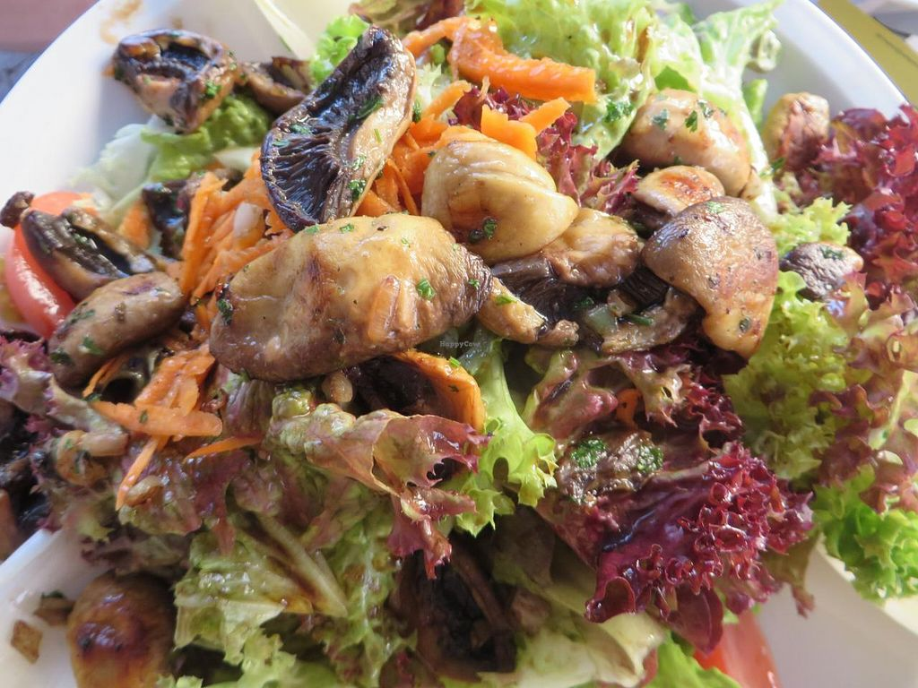 """Photo of Viva Zapata  by <a href=""""/members/profile/VegiAnna"""">VegiAnna</a> <br/>Ensalada Championes (salad with fried fresh mushrooms) <br/> June 14, 2014  - <a href='/contact/abuse/image/48083/72037'>Report</a>"""