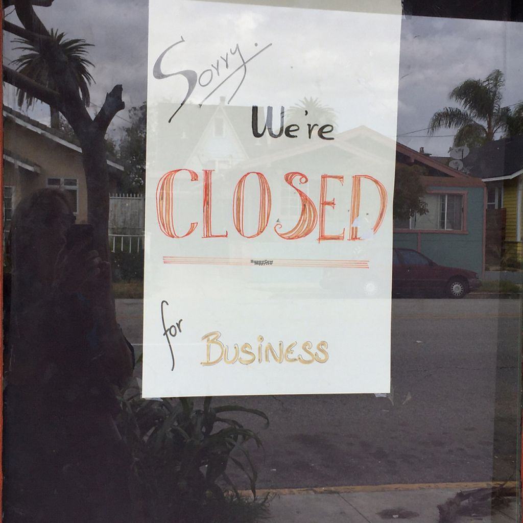"""Photo of CLOSED: Happy Elephant Vegan  by <a href=""""/members/profile/Tsqui"""">Tsqui</a> <br/>closed! <br/> April 13, 2017  - <a href='/contact/abuse/image/48191/247636'>Report</a>"""