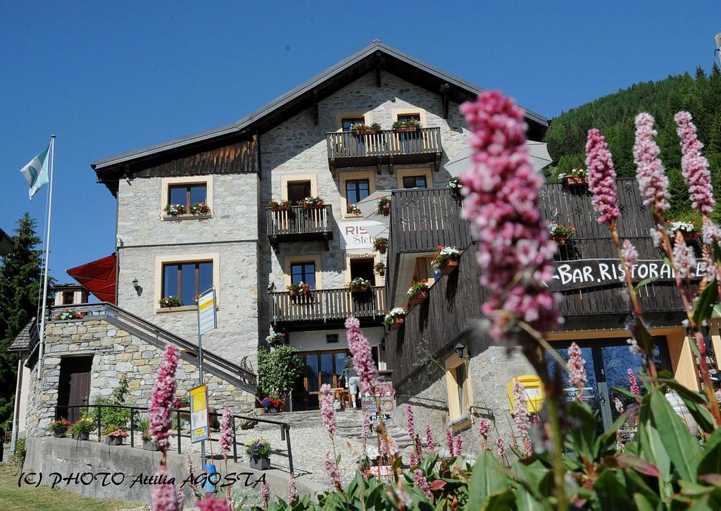 """Photo of Chalet Stella Alpina  by <a href=""""/members/profile/oliani%20mauro"""">oliani mauro</a> <br/>OUR SMALL MOUNTAIN HOTEL HAVE EXCELLENT RESTAURANT WITH ITALIAN KITCHEN AND MOUNTAIN'S SPECIALITIES, VEGAN AND VEGETARIAN. WE HAVE 11 ROOMS AND A SMALL SPA WITH SAUNA, JACUZZI AND RELAXING AREA. RESTAURANT CHALET STELLA ALPINA - COOKING WITH HEA <br/> August 13, 2014  - <a href='/contact/abuse/image/48245/76856'>Report</a>"""
