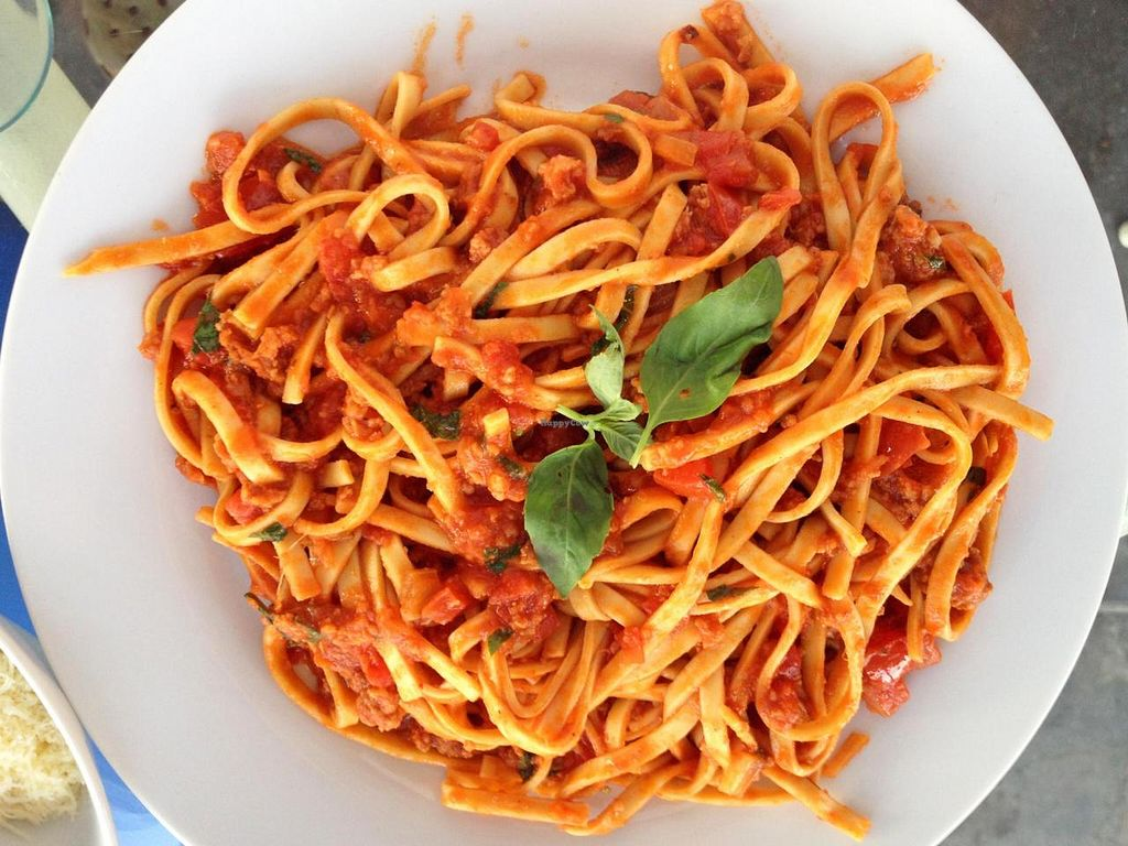 "Photo of Dawn on the Amazon Cafe  by <a href=""/members/profile/CaptainBillGrimes"">CaptainBillGrimes</a> <br/>Vegetarian marinara sauce on fettuccine pasta <br/> October 11, 2014  - <a href='/contact/abuse/image/48257/82670'>Report</a>"