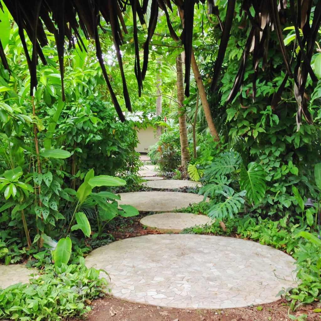 """Photo of Juice Bar at the Harmony Hotel  by <a href=""""/members/profile/Adopt%20A%20Pet"""">Adopt A Pet</a> <br/>Walkway from the Harmony Hotel through the jungle to the Cafe & Juice Bar + Healing Center (yoga classes, massages, etc.) <br/> June 26, 2014  - <a href='/contact/abuse/image/48364/72846'>Report</a>"""