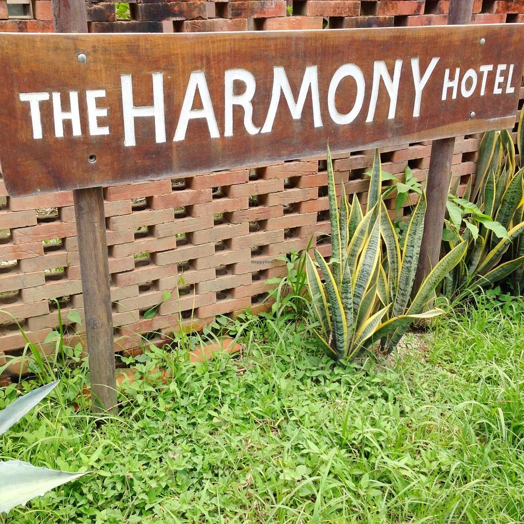 "Photo of Harmony Hotel Restaurant  by <a href=""/members/profile/Adopt%20A%20Pet"">Adopt A Pet</a> <br/>Consistent with the low key atmosphere of the hotel, the sign is a little difficult to see from the main road.   <br/> June 26, 2014  - <a href='/contact/abuse/image/48367/72835'>Report</a>"
