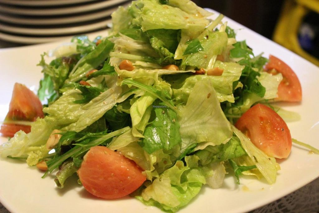 """Photo of Annam Restaurant  by <a href=""""/members/profile/Annam_Restaruant"""">Annam_Restaruant</a> <br/>Annam's Green Vegetable Salad <br/> July 14, 2014  - <a href='/contact/abuse/image/48538/74058'>Report</a>"""