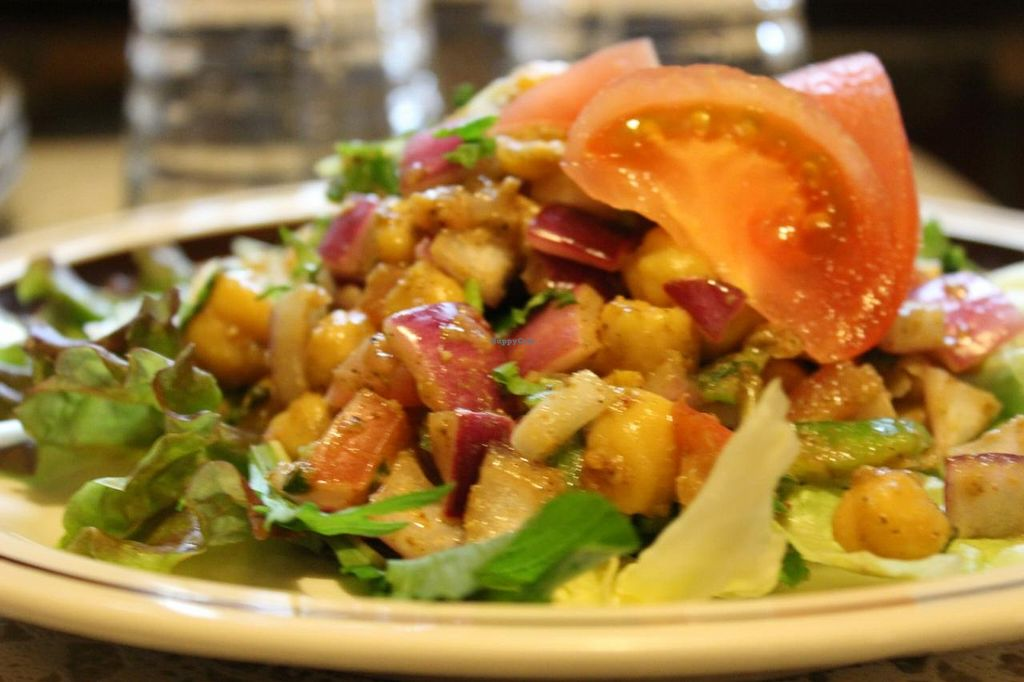 """Photo of Annam Restaurant  by <a href=""""/members/profile/Annam_Restaruant"""">Annam_Restaruant</a> <br/>Mixed Vegetable Salad <br/> July 15, 2014  - <a href='/contact/abuse/image/48538/74063'>Report</a>"""