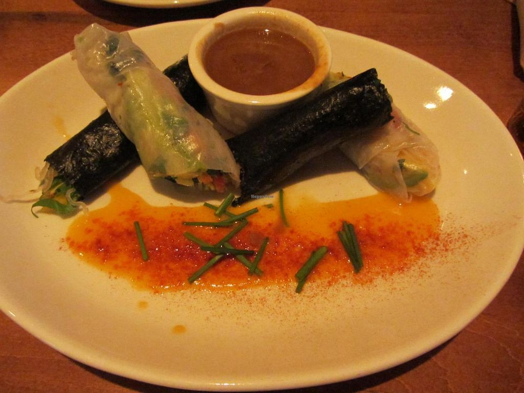 "Photo of CLOSED: Food Evolution  by <a href=""/members/profile/sohum"">sohum</a> <br/>Crystal rice and nori rolls with peanut sauce <br/> July 7, 2014  - <a href='/contact/abuse/image/48540/73433'>Report</a>"