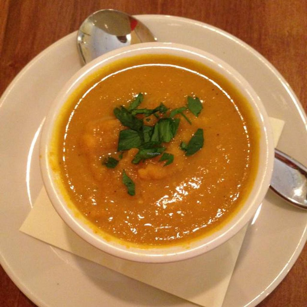 "Photo of CLOSED: Food Evolution  by <a href=""/members/profile/ladyekelund"">ladyekelund</a> <br/>Curried coconut carrot soup <br/> August 15, 2014  - <a href='/contact/abuse/image/48540/77063'>Report</a>"
