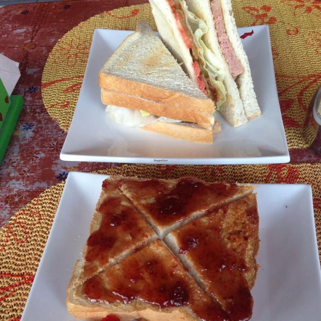 "Photo of Casa Cafe  by <a href=""/members/profile/veganjess86"">veganjess86</a> <br/>sandwiches <br/> July 5, 2014  - <a href='/contact/abuse/image/48584/73277'>Report</a>"