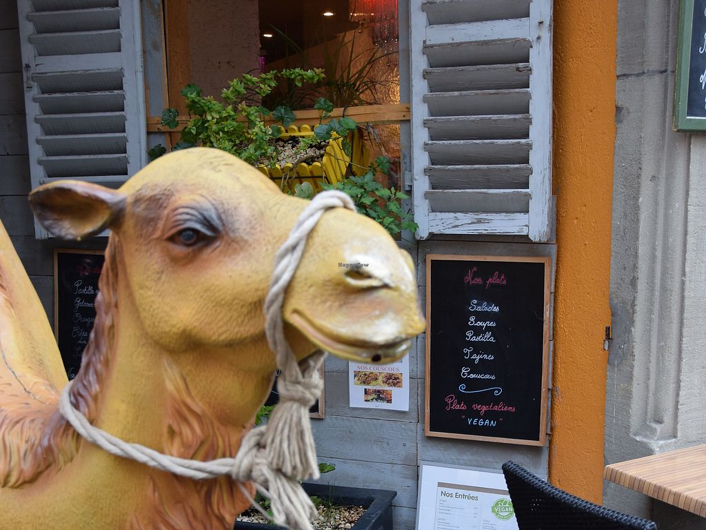 "Photo of Le Touareg  by <a href=""/members/profile/Thor"">Thor</a> <br/>A camel prop outside suits the Middle-Eastern restaurant, vegan options are clearly marked on the menu <br/> September 18, 2017  - <a href='/contact/abuse/image/48649/305726'>Report</a>"