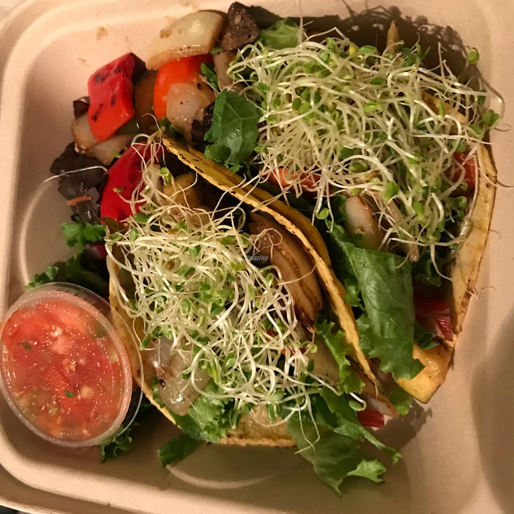 """Photo of Conscious Culture Cafe  by <a href=""""/members/profile/Sarah%20P"""">Sarah P</a> <br/>vegan veggie tacos to go <br/> January 6, 2017  - <a href='/contact/abuse/image/48712/208595'>Report</a>"""