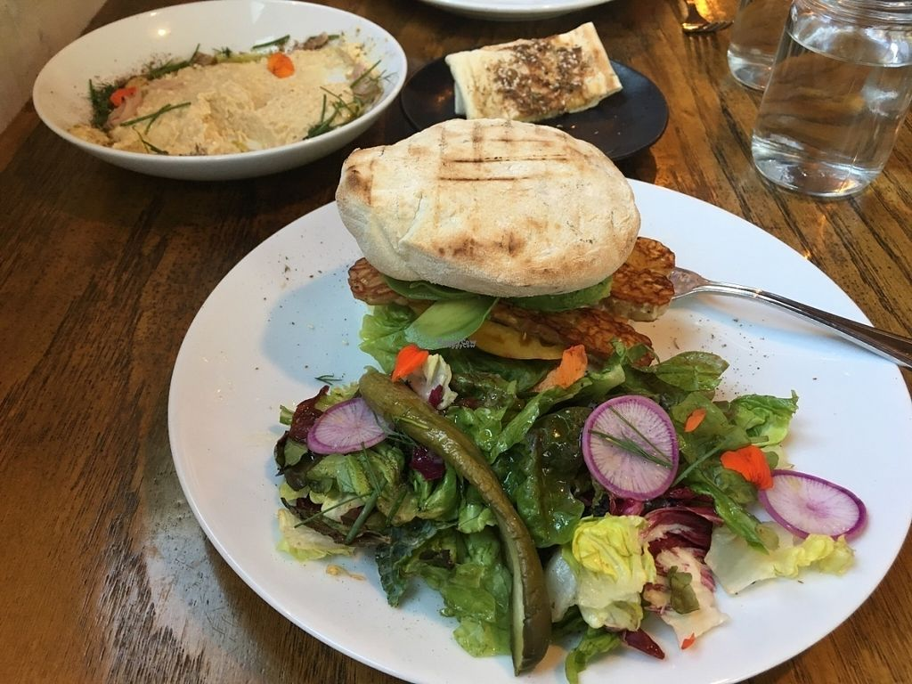 """Photo of Mesa Verde  by <a href=""""/members/profile/traveljunkie00"""">traveljunkie00</a> <br/>BLTA Sandwich with Flatbread and Hummus in the background <br/> September 4, 2016  - <a href='/contact/abuse/image/48743/173645'>Report</a>"""