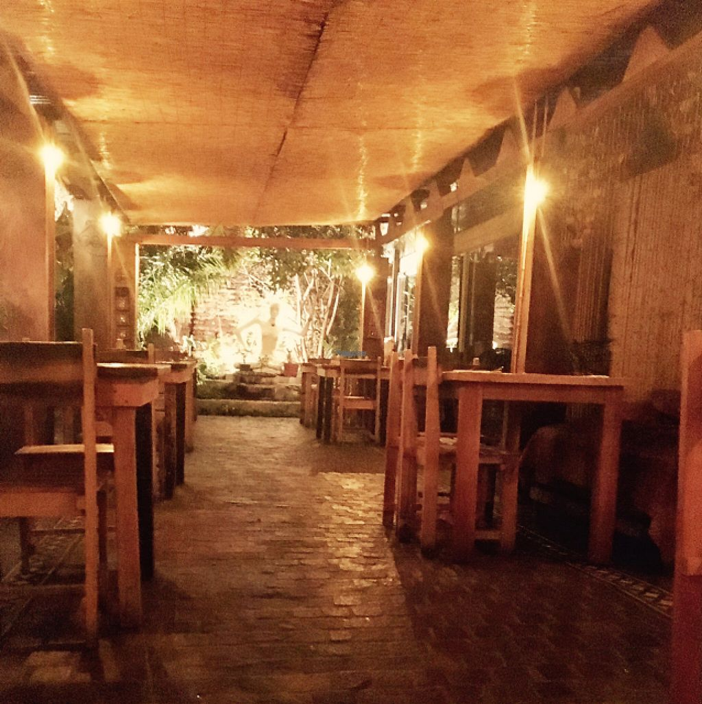 """Photo of Pad Thai  by <a href=""""/members/profile/milos99"""">milos99</a> <br/>pad Thai outdoor covered patio - charming and calm  <br/> April 7, 2017  - <a href='/contact/abuse/image/48824/245415'>Report</a>"""
