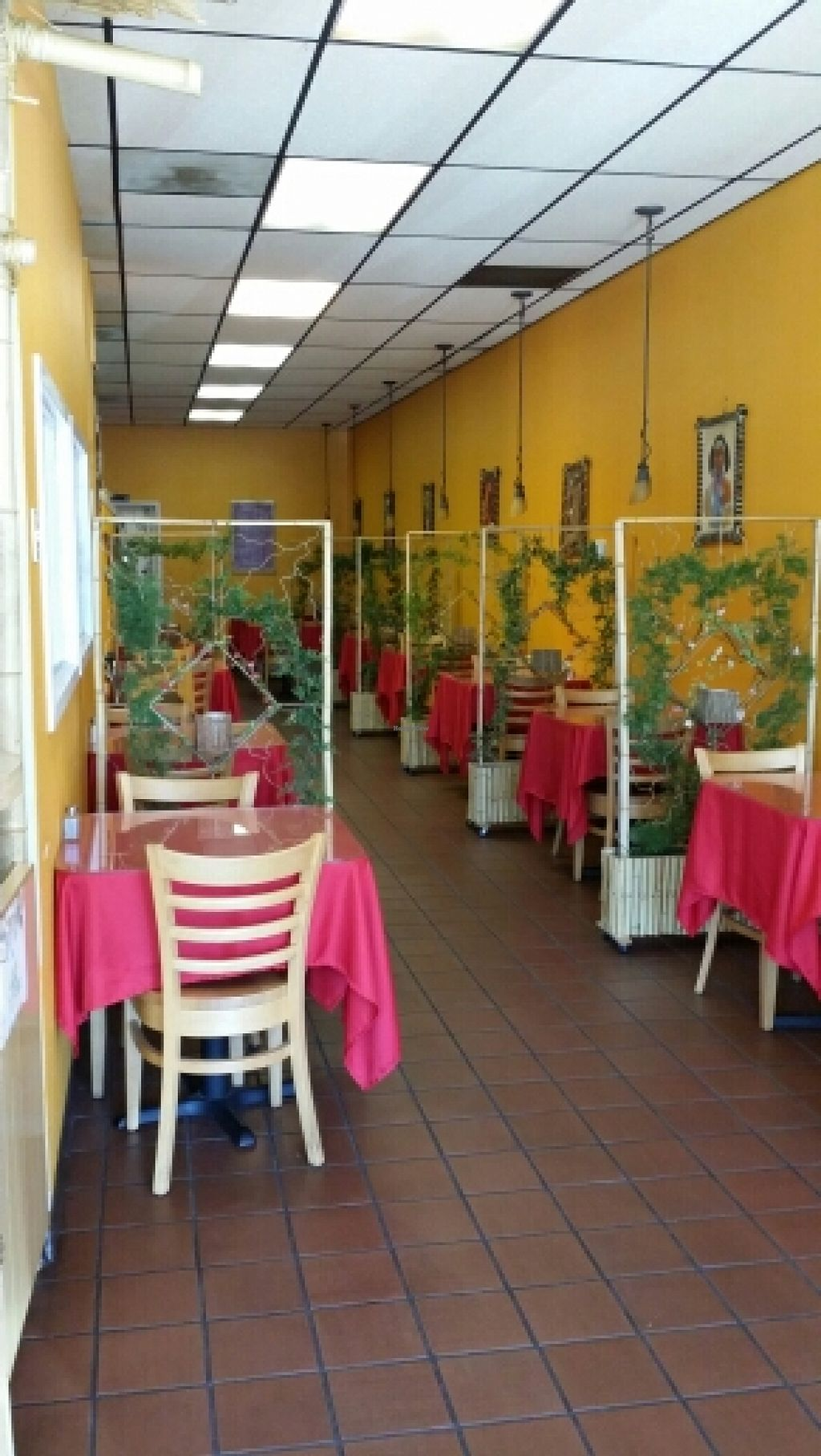 """Photo of Abyssinia Restaurant  by <a href=""""/members/profile/catbone"""">catbone</a> <br/>This is the adorable restaurant! <br/> February 15, 2016  - <a href='/contact/abuse/image/48953/136440'>Report</a>"""