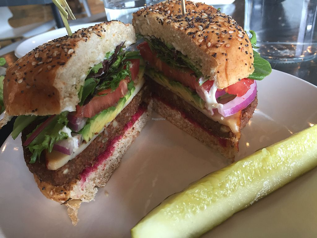 """Photo of Avo  by <a href=""""/members/profile/aWiiPeanut"""">aWiiPeanut</a> <br/>Lentil """"burger"""" <br/> September 14, 2017  - <a href='/contact/abuse/image/49007/304369'>Report</a>"""