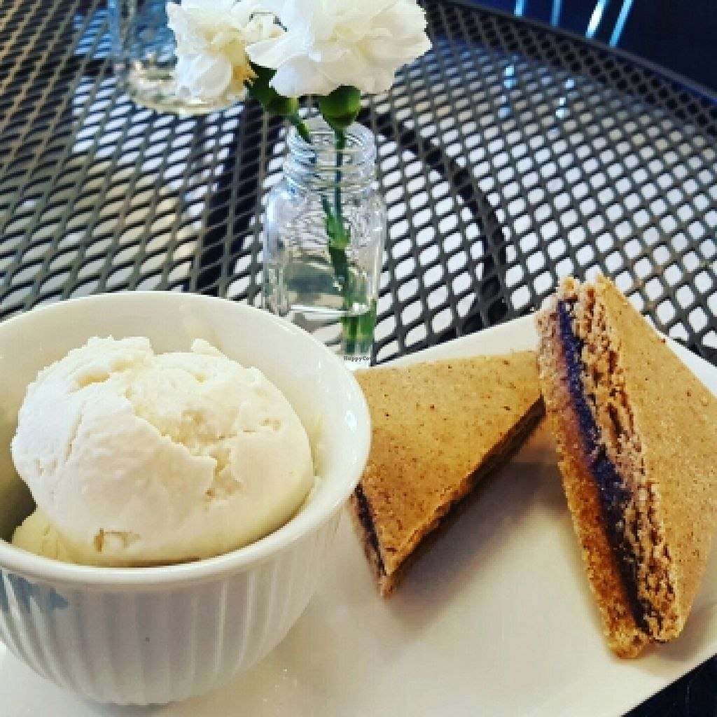 """Photo of CLOSED: RASA Kitchen + Juice Bar  by <a href=""""/members/profile/tesschallis"""">tesschallis</a> <br/>raw fig bars with coconut cashew ice cream  <br/> April 18, 2016  - <a href='/contact/abuse/image/49022/145157'>Report</a>"""