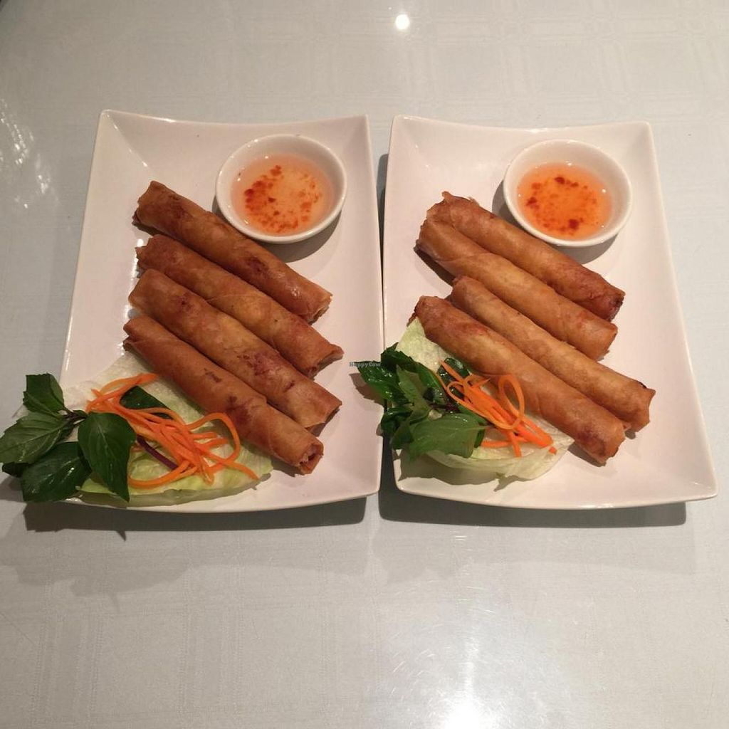 "Photo of Tamarind Vietnamese Grill and Noodle House  by <a href=""/members/profile/vegetariangirl"">vegetariangirl</a> <br/>2 orders of spring rolls <br/> November 10, 2014  - <a href='/contact/abuse/image/49030/85186'>Report</a>"
