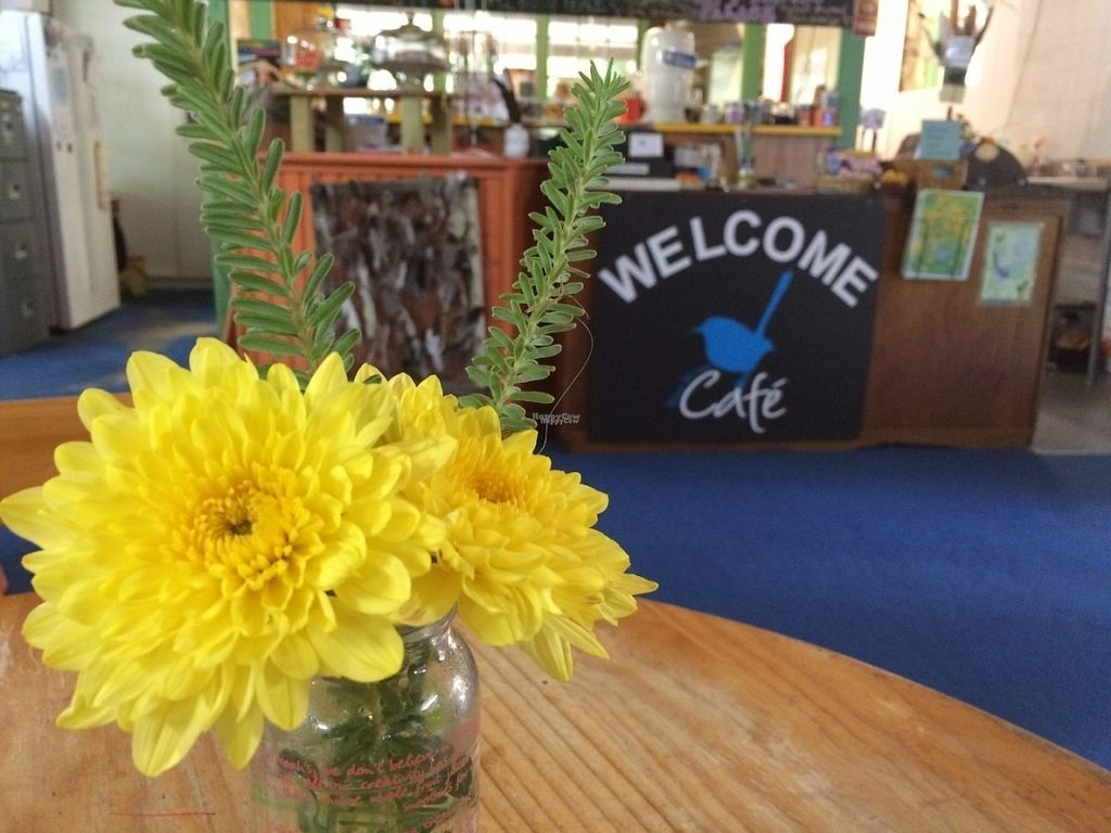 Photo of Blue Wren Cafe  by LeaP <br/>Looking towards the counter <br/> September 9, 2016  - <a href='/contact/abuse/image/49041/174496'>Report</a>