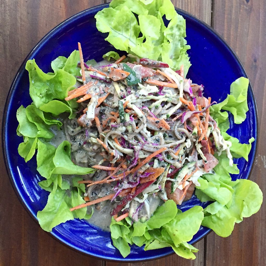 "Photo of Amrita Garden  by <a href=""/members/profile/Vegan-Leo"">Vegan-Leo</a> <br/>soba noodle salad <br/> December 21, 2016  - <a href='/contact/abuse/image/49074/203365'>Report</a>"