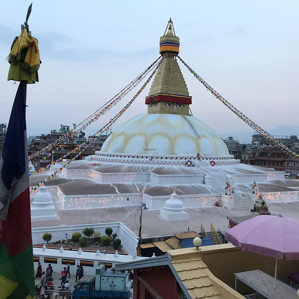 """Photo of Stupa View  by <a href=""""/members/profile/earthville"""">earthville</a> <br/>stupa view from the top terrace <br/> May 3, 2017  - <a href='/contact/abuse/image/49092/255225'>Report</a>"""