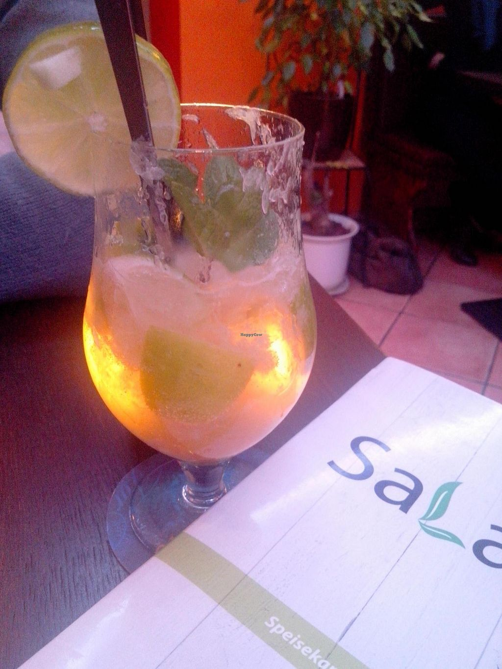 """Photo of CLOSED: Sala  by <a href=""""/members/profile/Lu73"""">Lu73</a> <br/>Alcohol-free herbal drink, fresh & tasty <br/> May 9, 2015  - <a href='/contact/abuse/image/49104/101692'>Report</a>"""