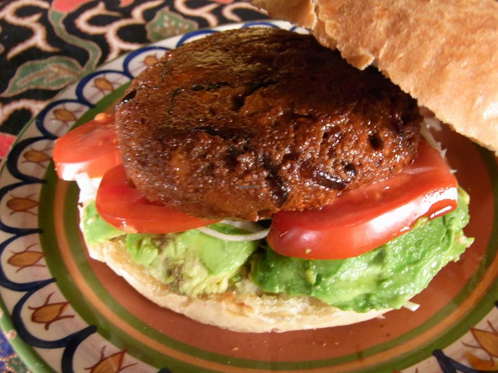 "Photo of Kámui  by <a href=""/members/profile/tierrablue"">tierrablue</a> <br/>Teriyaki Tofu Burger <br/> July 25, 2014  - <a href='/contact/abuse/image/49108/75029'>Report</a>"