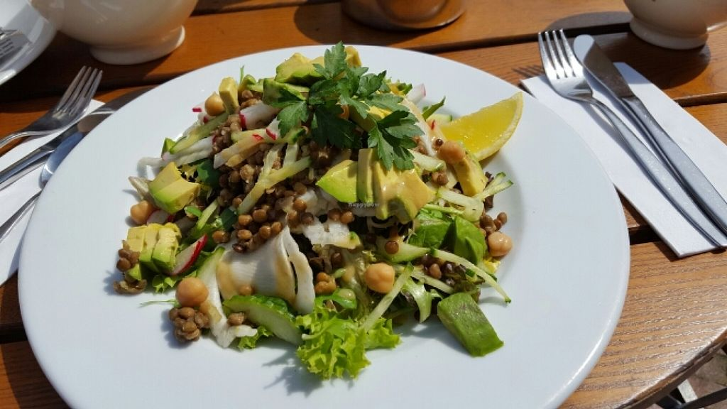 """Photo of Le Pain Quotidien  by <a href=""""/members/profile/Rosalie"""">Rosalie</a> <br/>Lovely salad <br/> May 4, 2016  - <a href='/contact/abuse/image/49110/147480'>Report</a>"""