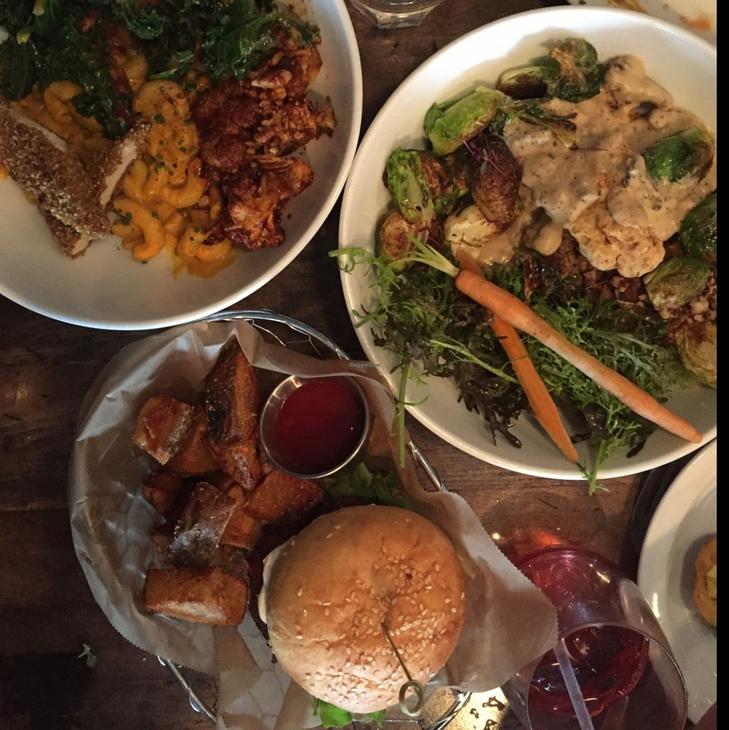"""Photo of Modern Love  by <a href=""""/members/profile/Twee%20G"""">Twee G</a> <br/>Mac and cheese is the first entree on the menu, the special southern fried tofu, and the burger are all EPIC <br/> April 19, 2016  - <a href='/contact/abuse/image/49171/145327'>Report</a>"""