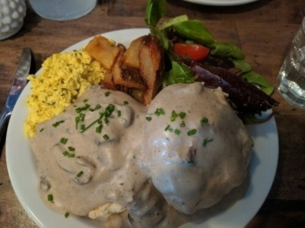 """Photo of Modern Love  by <a href=""""/members/profile/JohnGardner"""">JohnGardner</a> <br/>Biscuits and Gravy <br/> July 10, 2016  - <a href='/contact/abuse/image/49171/158982'>Report</a>"""