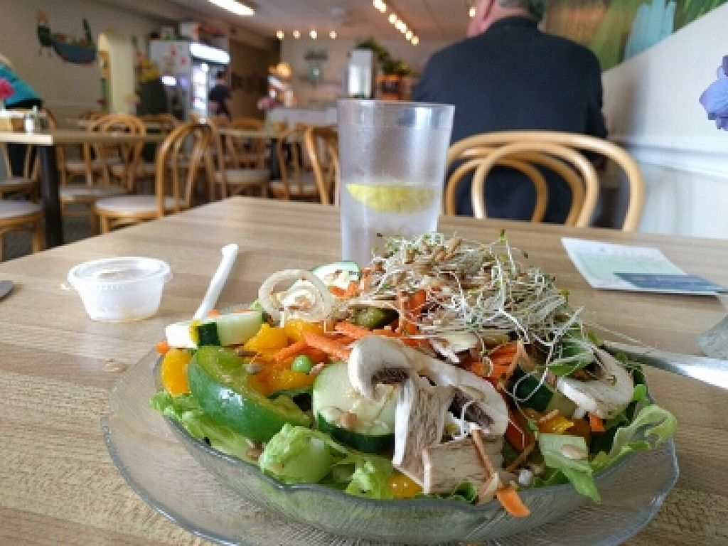 """Photo of Green Cuisine Restaurant  by <a href=""""/members/profile/MatthewVBogusz"""">MatthewVBogusz</a> <br/>delicious oriental salad with sunflower seeds and a glass of water.  vegan of course <br/> July 4, 2016  - <a href='/contact/abuse/image/4920/157750'>Report</a>"""