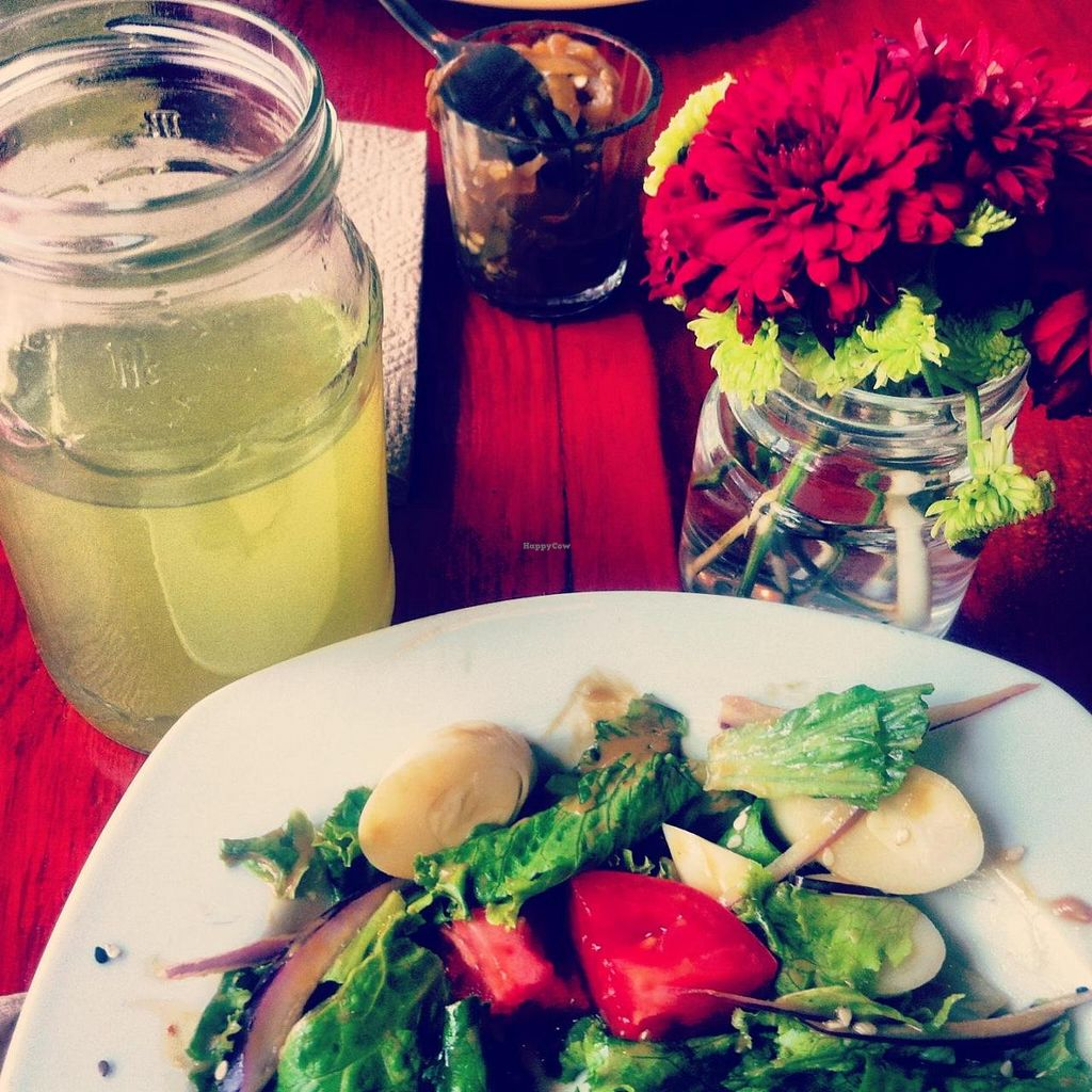"""Photo of Pan Comido Vegetariano - Darwin   by <a href=""""/members/profile/sandramv"""">sandramv</a> <br/>delicious salad!  <br/> July 25, 2014  - <a href='/contact/abuse/image/49219/75050'>Report</a>"""