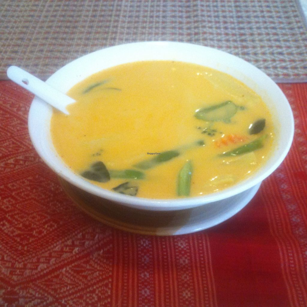 """Photo of Visoun  by <a href=""""/members/profile/Arvid"""">Arvid</a> <br/>Yellow coconut curry (25,000 kip) <br/> February 14, 2016  - <a href='/contact/abuse/image/49244/136351'>Report</a>"""