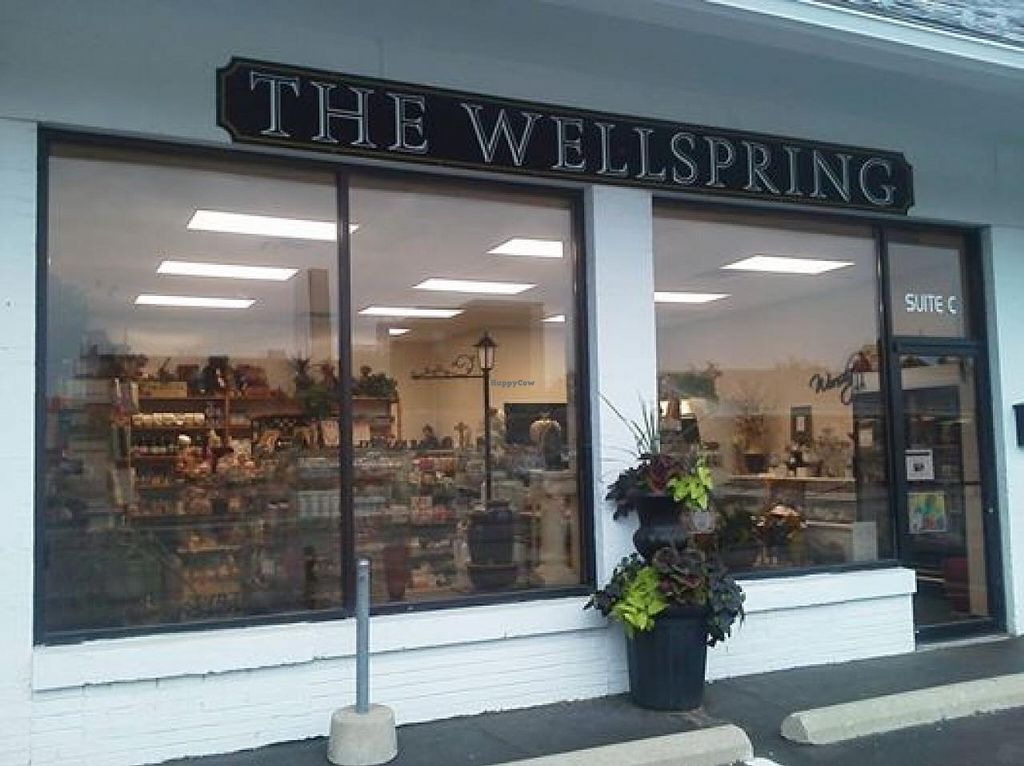 """Photo of The Wellspring  by <a href=""""/members/profile/community"""">community</a> <br/>The Wellspring <br/> July 28, 2014  - <a href='/contact/abuse/image/49288/75347'>Report</a>"""