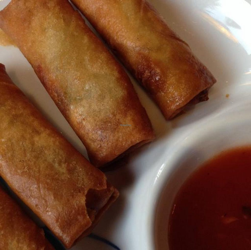 """Photo of Asia Bambus  by <a href=""""/members/profile/Brok%20O.%20Lee"""">Brok O. Lee</a> <br/>Vegan Spring Rolls <br/> August 4, 2014  - <a href='/contact/abuse/image/49321/76043'>Report</a>"""
