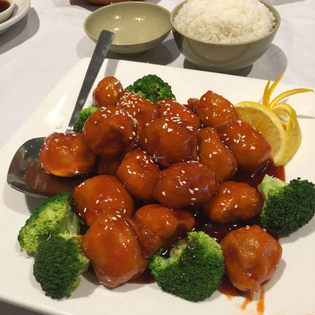 "Photo of Mai Dragon  by <a href=""/members/profile/ohemgee"">ohemgee</a> <br/>vegan sesame chicken with white rice  <br/> September 28, 2015  - <a href='/contact/abuse/image/49407/119462'>Report</a>"